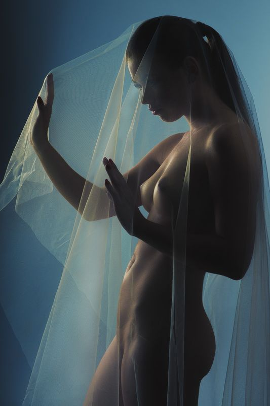 bride, nude, veil, nude, naked Bridephoto preview