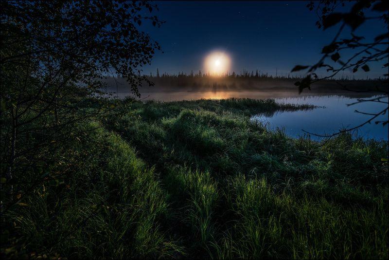 Луна, Пейзаж, Природа, Туман Под лунойphoto preview