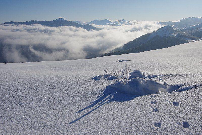 зимняя подборкаphoto preview