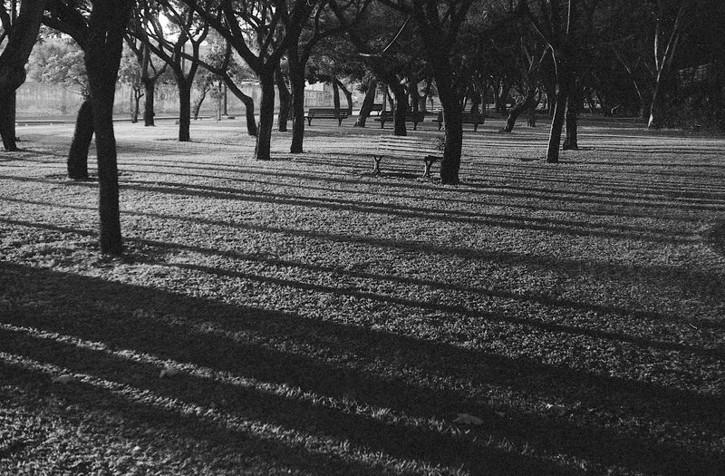 flim, fomapan, zorki, bw, blackandwhite Тениphoto preview