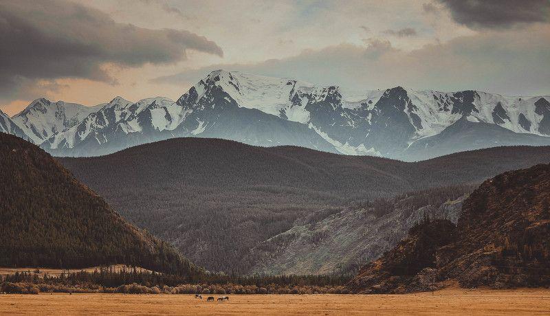 Altai, Mountain ***photo preview