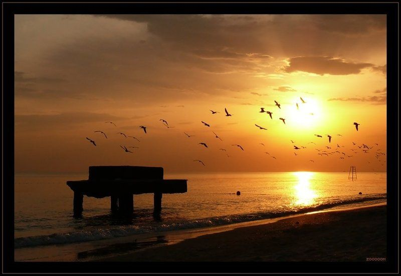 море,закат,чайки Закатная хреновинаphoto preview