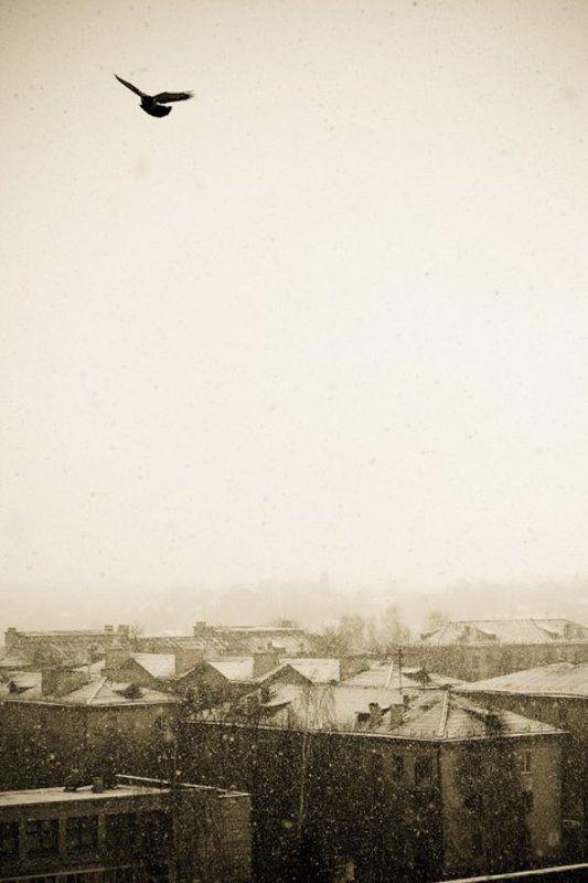 город, зима Сказкаphoto preview