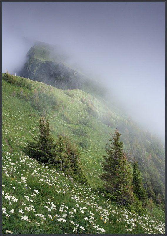 Туманные зигзаги горphoto preview