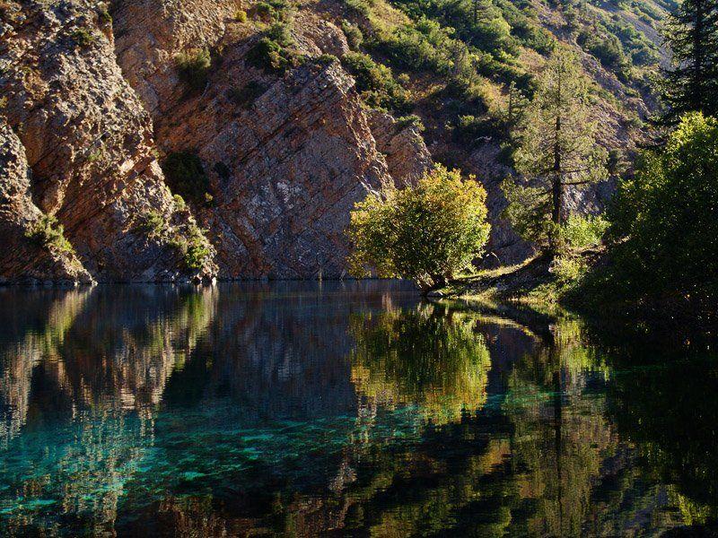 горы, озеро, вода, дерево. Волшебное утро.photo preview