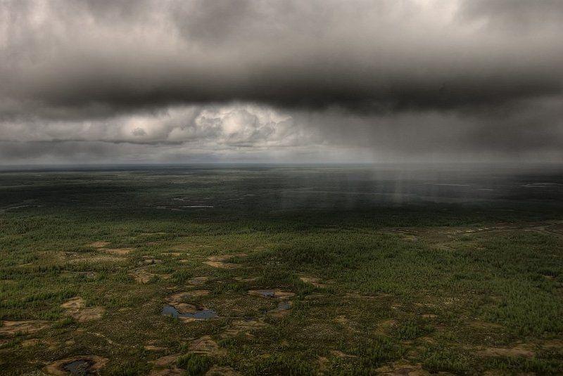 Дождь в тундре с высоты птичьегоphoto preview