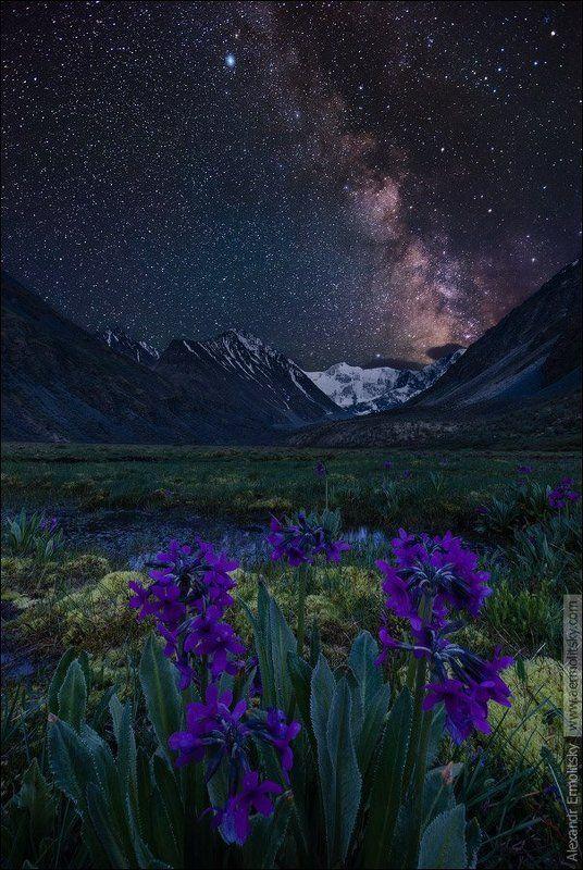Altai, Алтай ~ Кара тюн ~photo preview