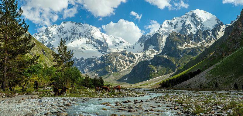адырсу, кабардино-балкария, приэльбрусье, северный кавказ, ущелье в горах у рекиphoto preview