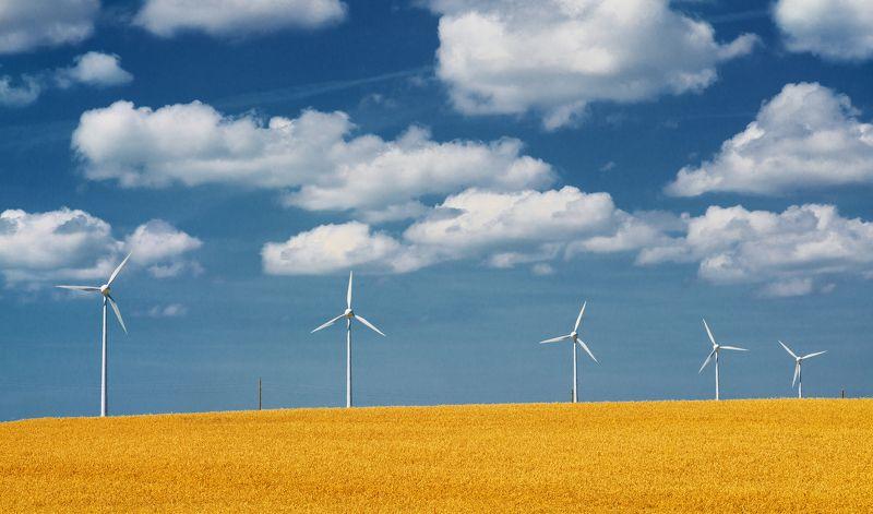 небо, облака, ветрогенератор, пшеница, поле, электричество, экология, синий, желтый, белый Облакаphoto preview