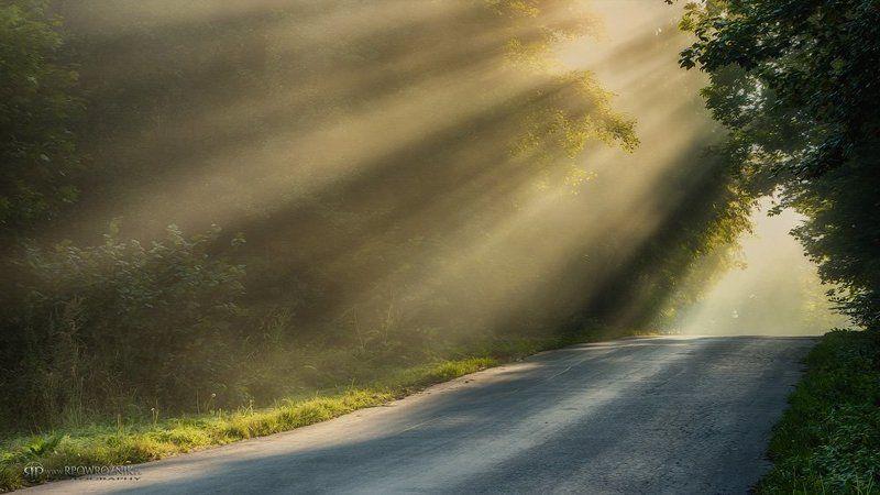 Canon, Fog, Light, Morning, Rpowroznik, Scenery morning light...photo preview