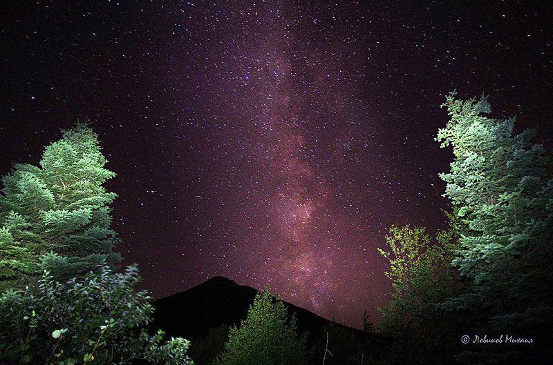 про пихты, горы и Млечный путьphoto preview