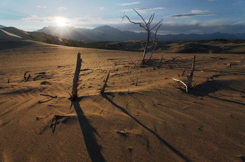 горы, забайкалье, песок, пустыня, чара, чарские пески В Чарских песках - часть первая.photo preview