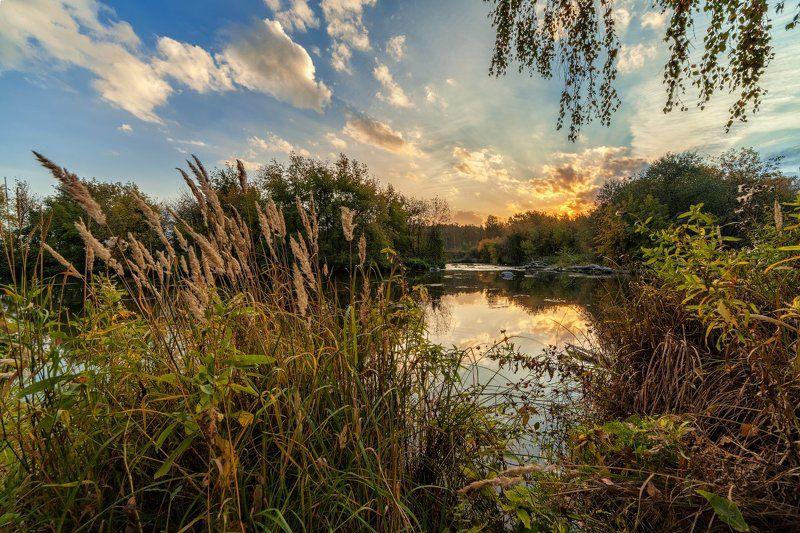 осень Осень Жариковой дачиphoto preview