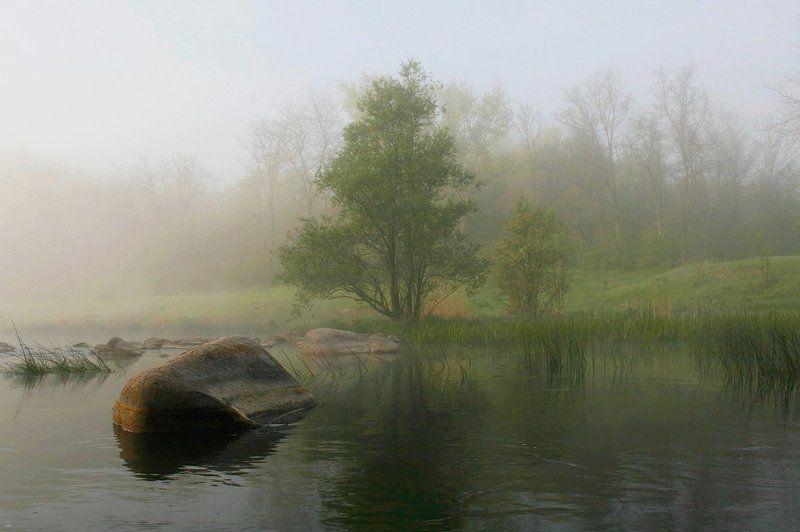 Река. Утро. Туман. Скалы. Утренняя гармония.photo preview