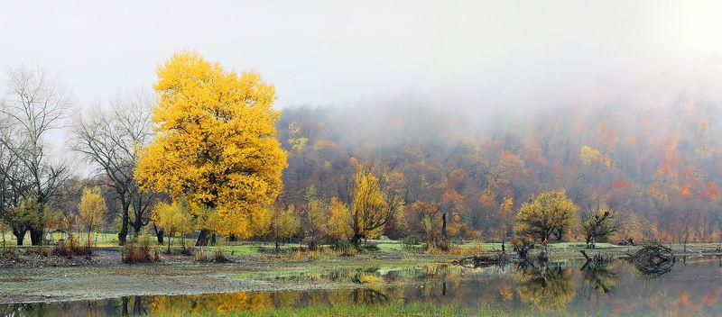 ETIBAR JAFAROV , Azerbaijan