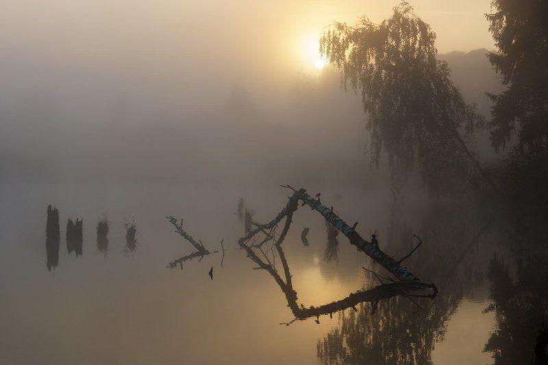 Вода, Грумант, Коряга, Рассвет, Тумант, Утро Утро, туман, мистика...photo preview