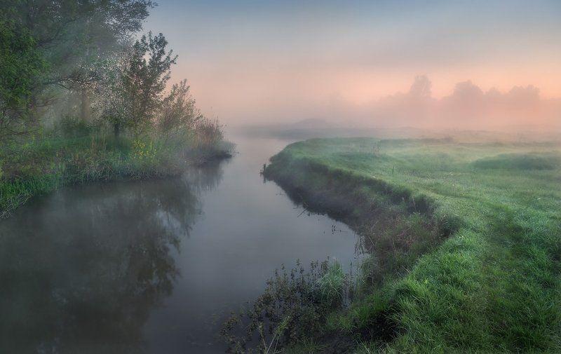утро, туман, река, роса, рассвет Утро на рекеphoto preview