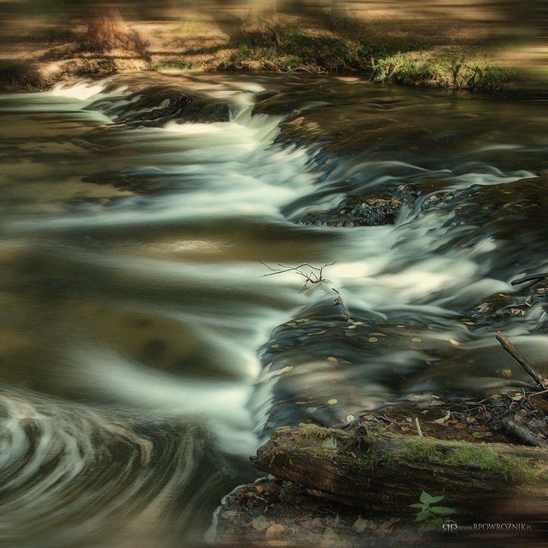 Longtimeexposure, Nature reserve, Rebizanty, River, Rpowroznik, Tanew 13 seconds...photo preview