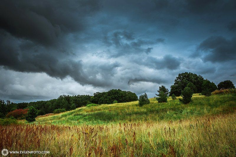 пейзаж,природа,landscape,nature Перед дождёмphoto preview