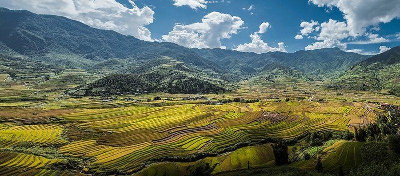 Tu le, Vietnamphoto preview