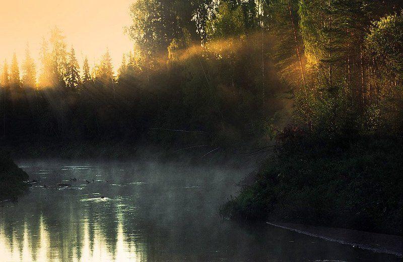 Таёжная речка утромphoto preview