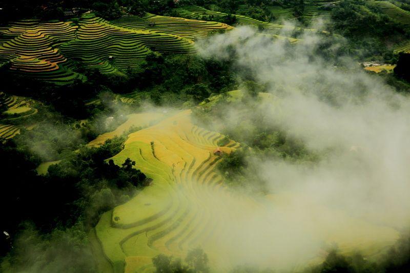 Hoai_Nguyenquy, Vietnam
