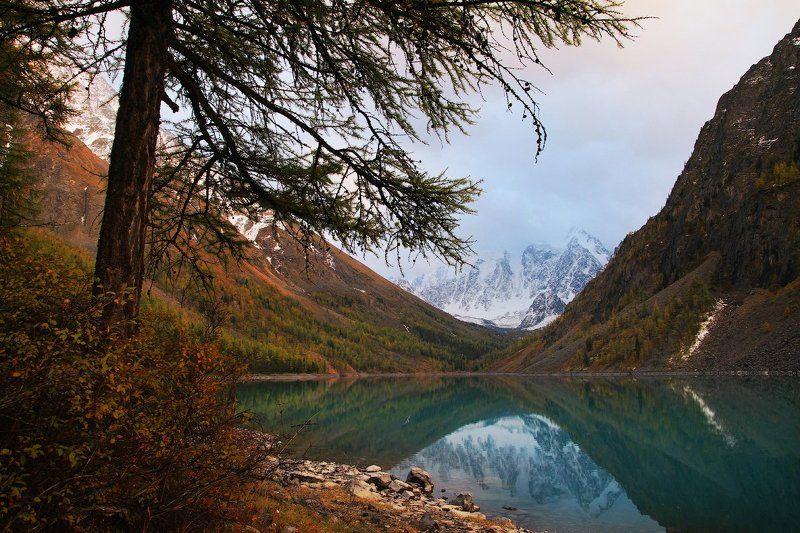 озеро, алтай, вода, горы Отражение красавицыphoto preview