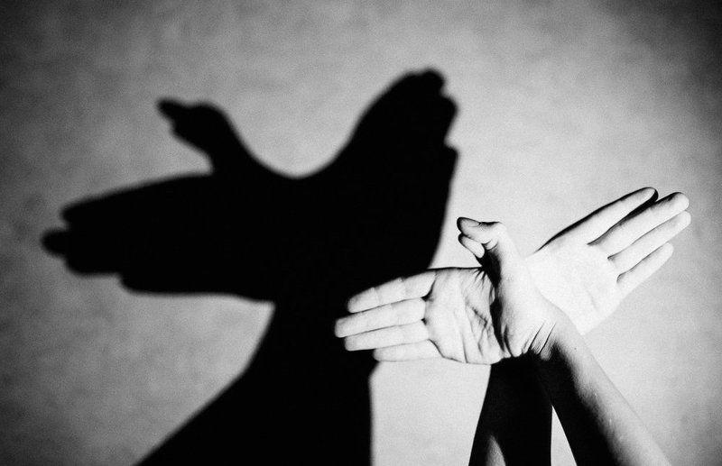 руки, тени, птица, чб Птицаphoto preview