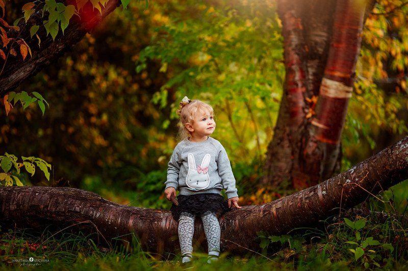 девочка, осень, дерево, лес В осеннем лесуphoto preview