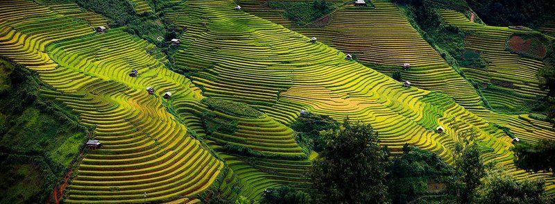 quanphoto, Vietnam