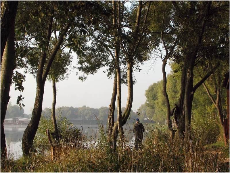 пруд, рыбалка, утро На рыбалкеphoto preview