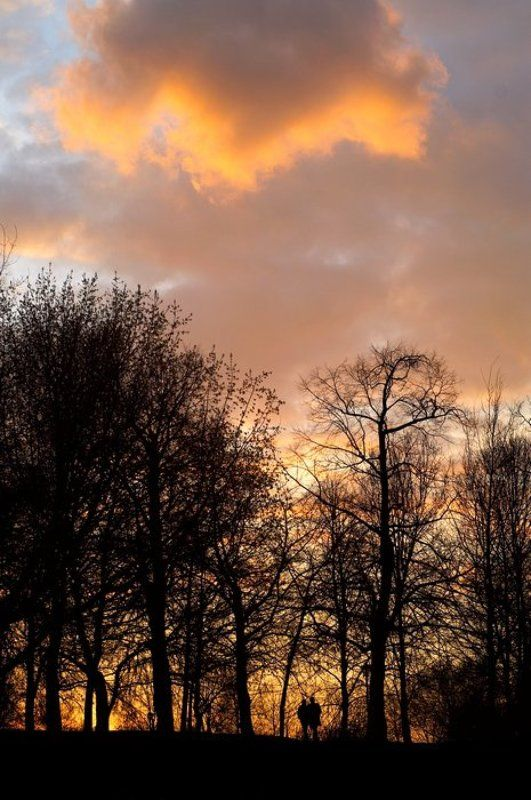 коломенское, закат Гости на землеphoto preview