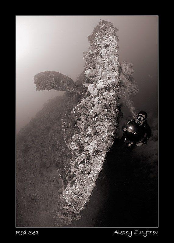 зайцев, затонувший корабль, винт, рулевое оперение, дайвер Dunravenphoto preview