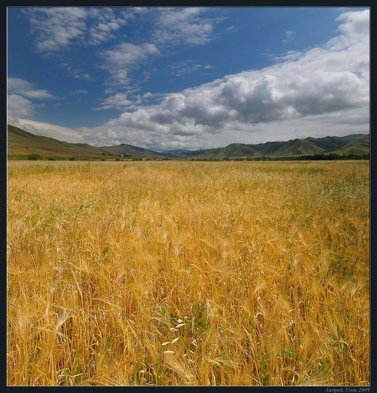 природа,поле,август,пшеница,горы,облака,долина,столбы,лето Последний день летаphoto preview