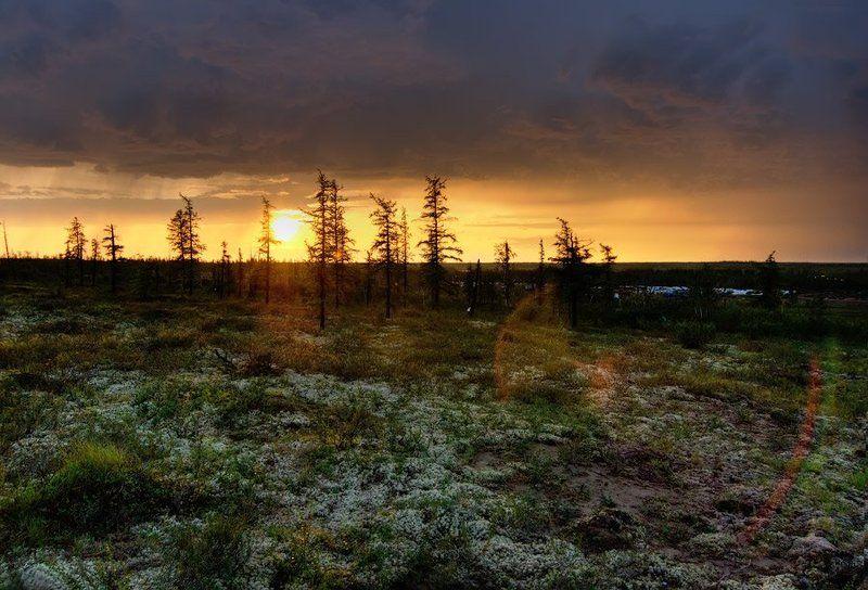 Ночь в полярный деньphoto preview