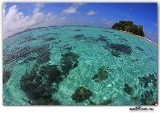 The Round World *Papua*