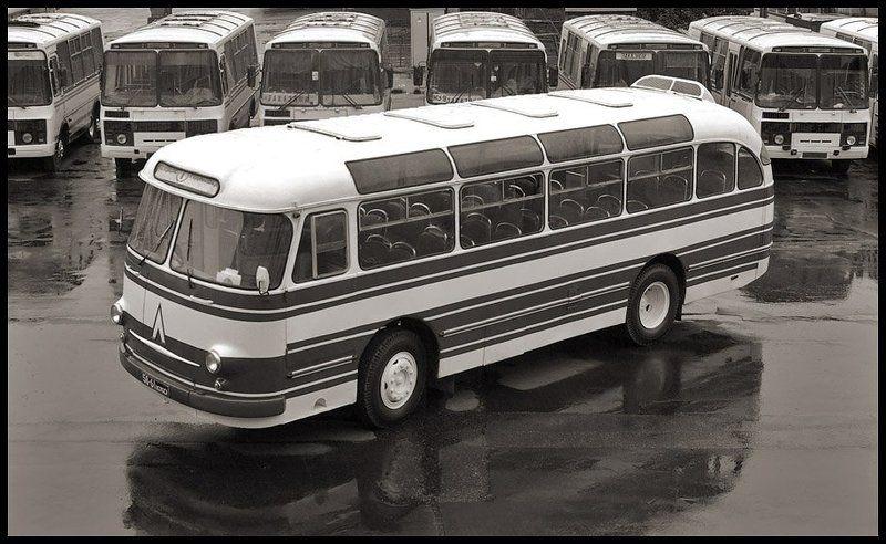автобус, , лаз, , 695е, , история, , город, , транспорт, , нтв ЛАЗ-695Еphoto preview