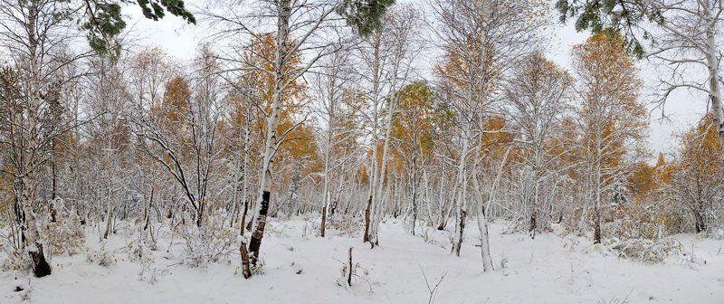 бурятия, улан-удэ, сентябрь, снег, снегопад \