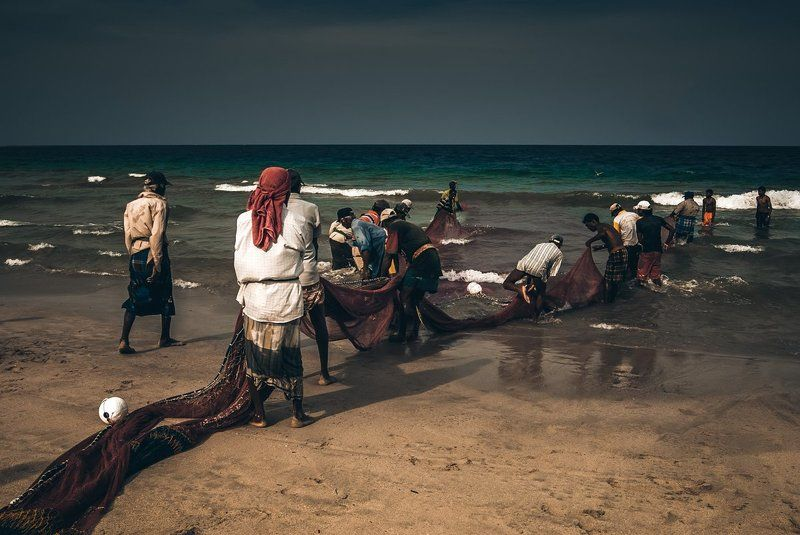 шри ланка, сеть, рыбалка, рыбаки, океан, апрель, sri lanka, ocean, net, fishing, fishermen, april Fishing in Sri Lanka...photo preview