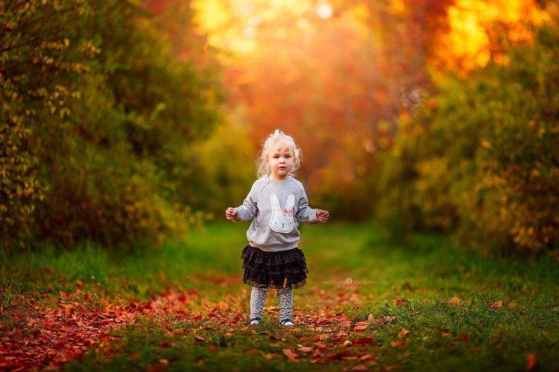 девочка, осень, закат, листопад Анечкаphoto preview