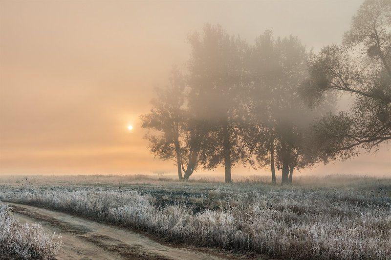 Восход в туманеphoto preview