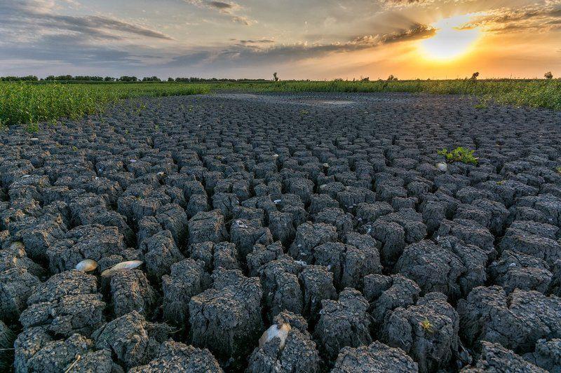 засуха, трещины, пересохшее, озеро Широкогорлоеphoto preview