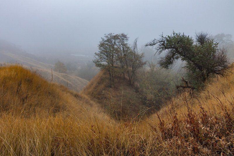 Осенние туманыphoto preview