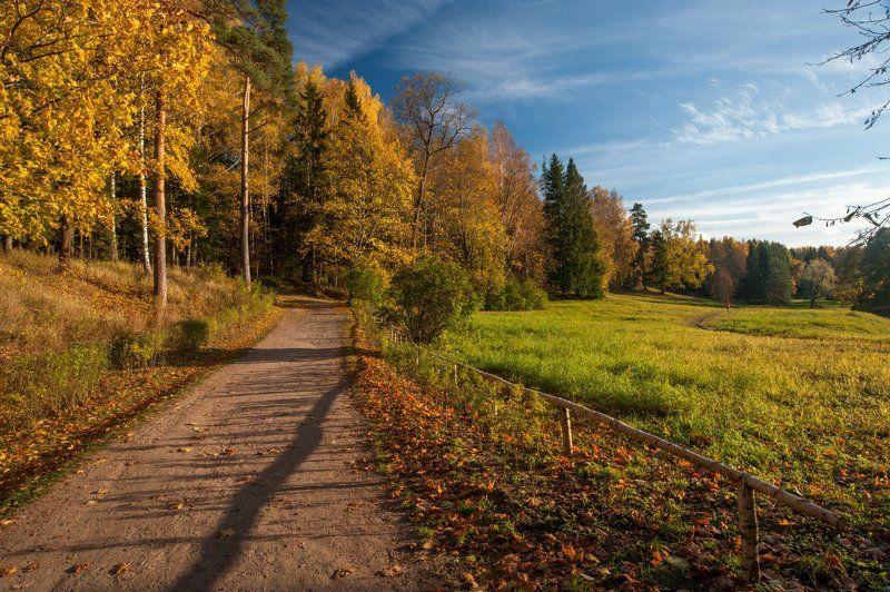 Павловский парк октябрь ***photo preview