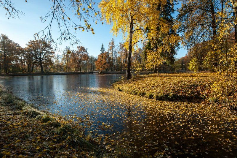 Пушкин Александровский парк октябрь ***photo preview