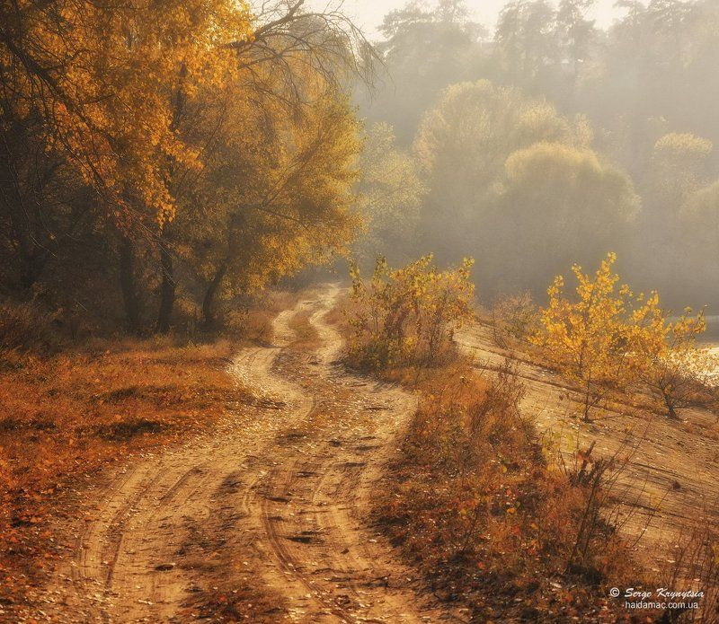 осень, autumn, fall Autumn Dreamnessphoto preview