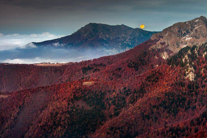 Лунный Рассветphoto preview