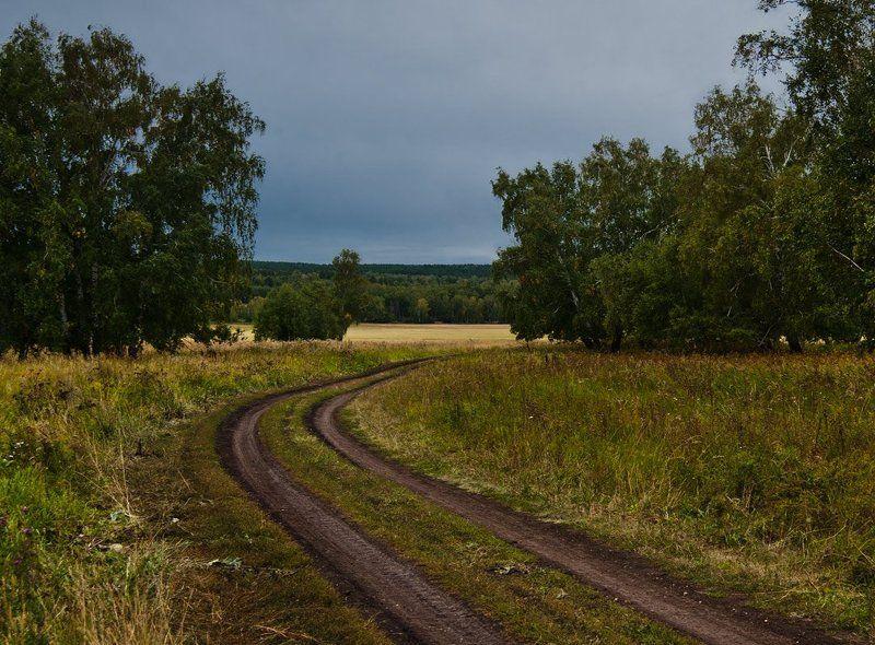 Дорога, Лес, Поле В ожидании дождяphoto preview