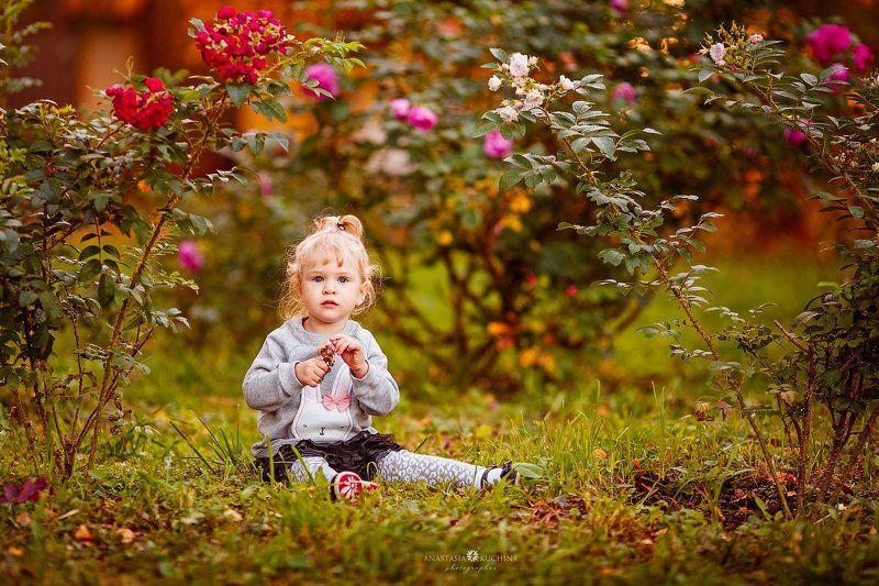 девочка, осень, цветы, портрет В цветах осениphoto preview