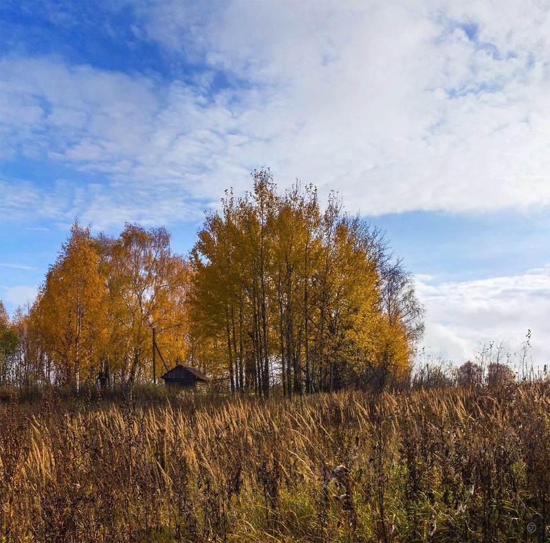 В октябре на верхней Волгеphoto preview